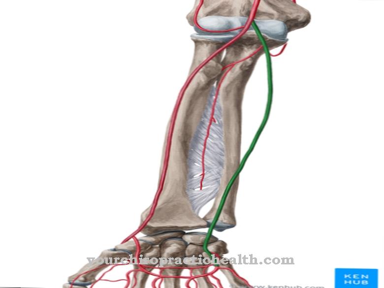 Улнарна артерија
