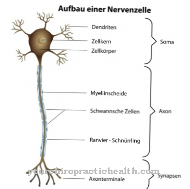 Nerve inflammation