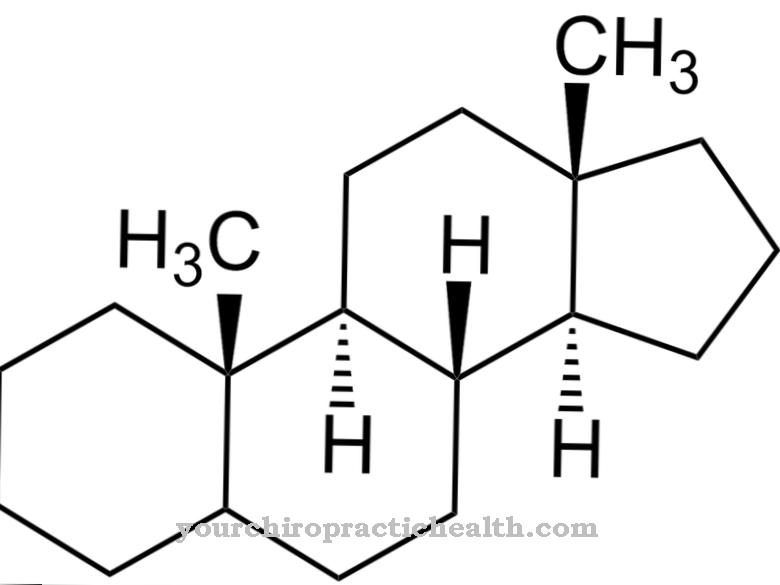 Androgènes